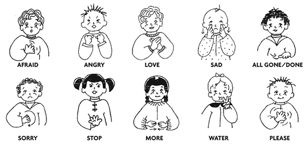 5 things you didn't know about sign language  Hotcourses