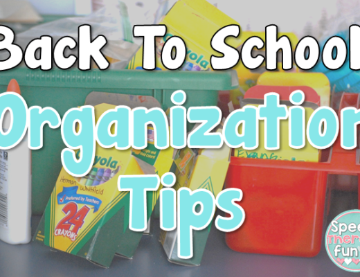 Speech Therapy Fun: Organization Tips