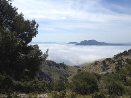 Rennrad Trainingslager Mallorca