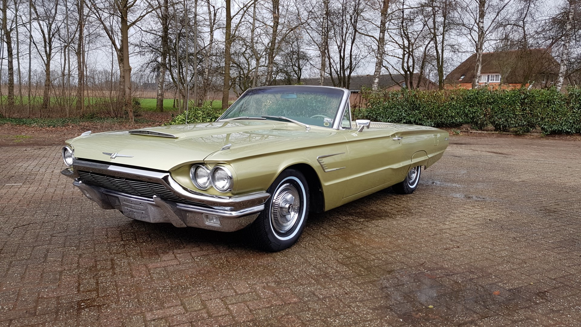 1965 Ford Thunderbird Convertible 390ci - Ivy Gold