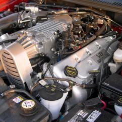 1998 F150 Alternator Wiring Diagram Softball Positions Mustang Face Off: Boss 429 Vs 2003 Terminator Cobra - Stangtv