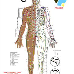 Pressure Points Diagram Massage Three Way Electrical Switch Point Chart Template Free Download Speedy 1