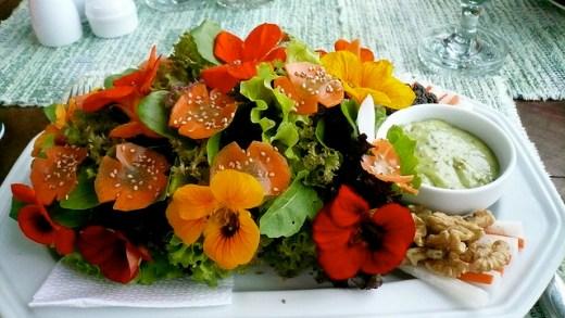 Essbare Blumen - Essbare Blüten