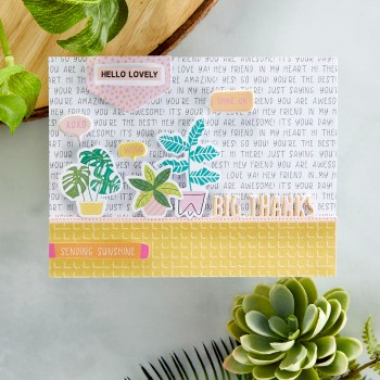 June 2021 Card Kit of the Month is Here – Wild Hello