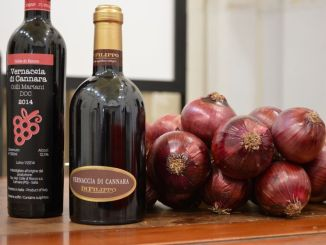 Vernaccia di Cannara, riconoscimento del vitigno autoctono
