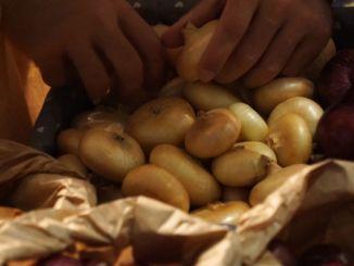 Ultimo weekend per la 38esima festa della Cipolla di Cannara