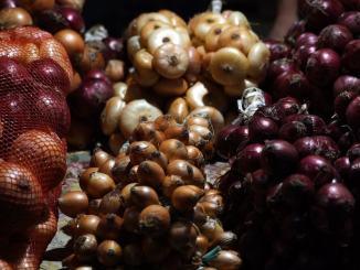 Cannara, la festa della Cipolla dà appuntamento al settembre 2021