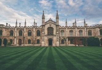 lawn, grass, castle
