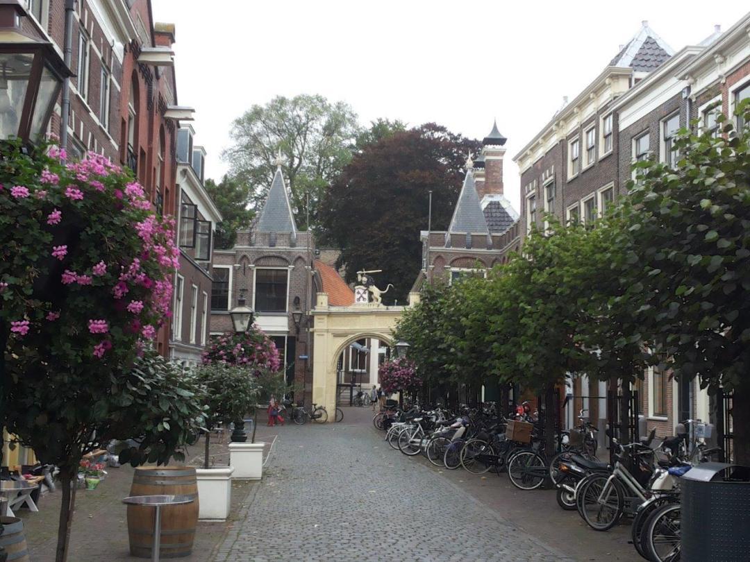 visit Leiden: travel tip in the Netherlands