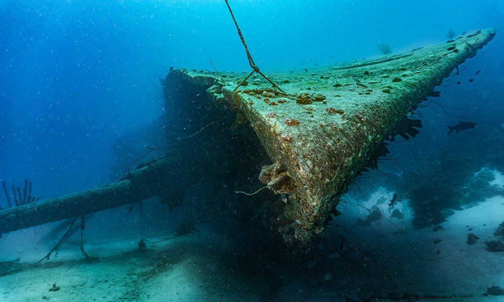 Hilma Hooker: one of the best dive sites in Bonaire