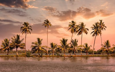 Highlights of Kerala, India – Places to Visit & Things to Do in Kerala