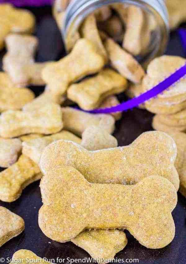Pumpkin Spice & Everything Nice (DIY Fall Dog Treats) - Woof Blitzer News