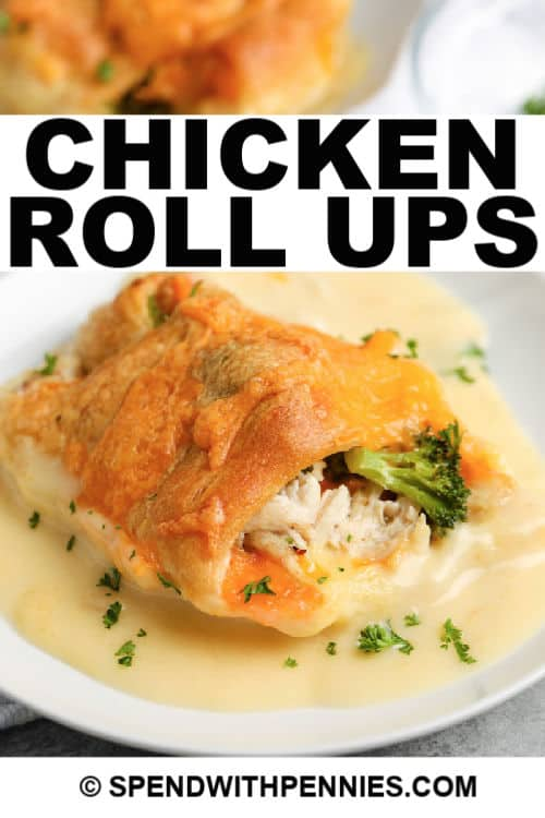 Chicken Roll Up on a plate with writing