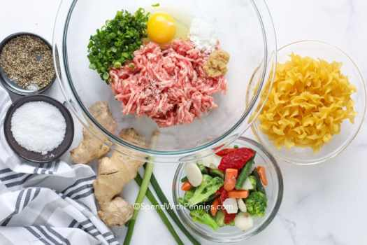 ingredients to make pork meatballs and unwrapped wonton soup