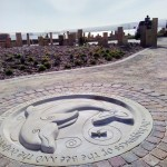 dolphin sculpture for Chanonry Point