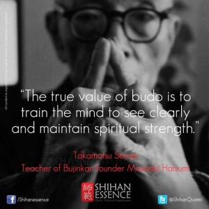 The true value of budo
