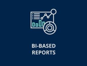 bibased reports 02 01