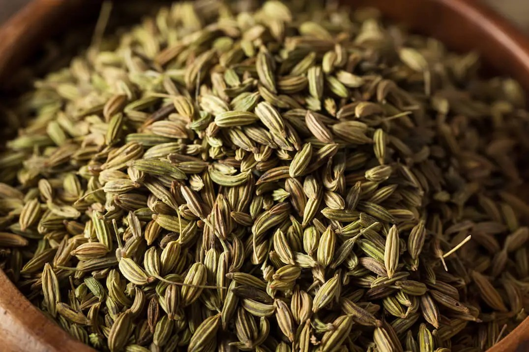 Fennel Seed: Sweet Licorice-Like Spice - SPICEography