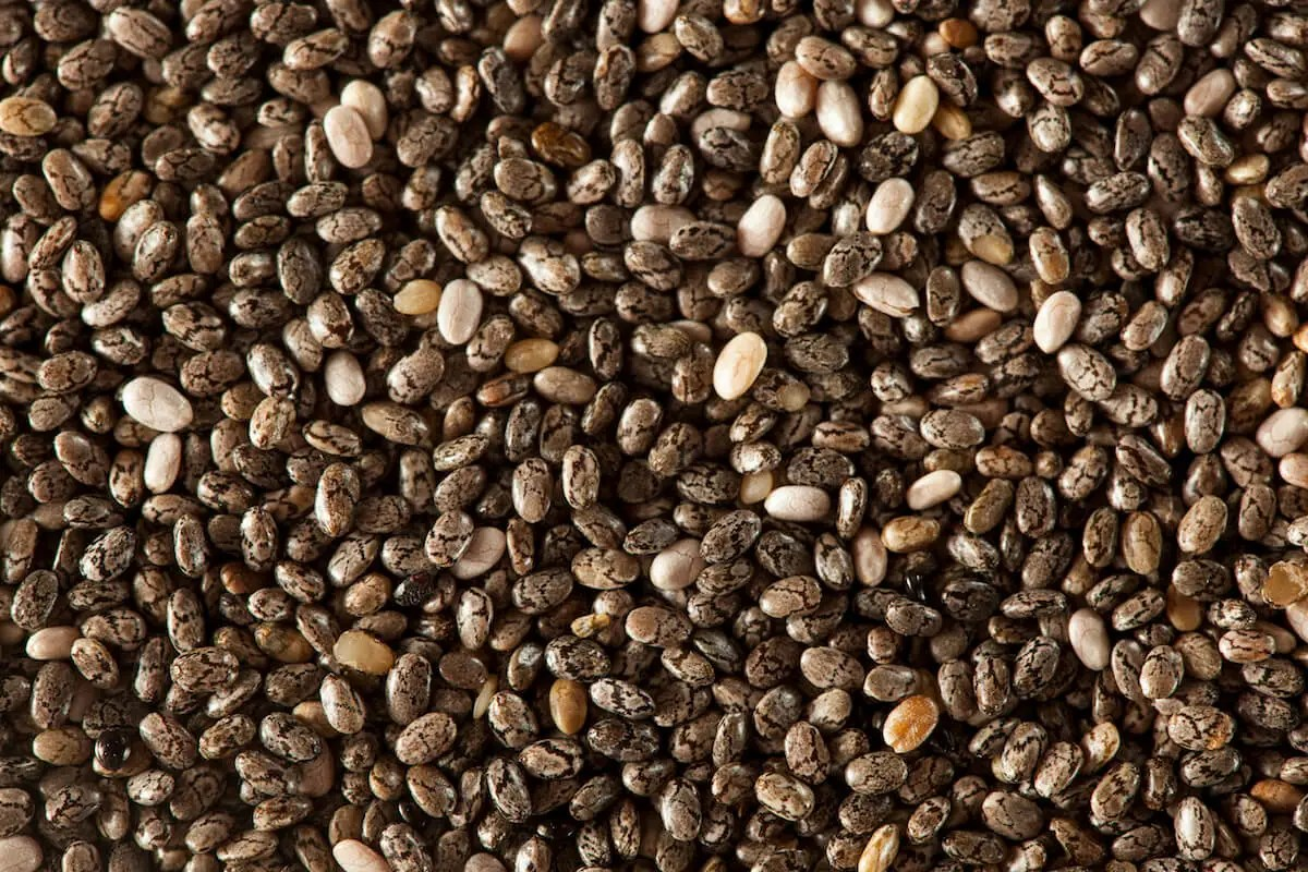 Chia Seeds: Superfood Of The Aztecs - SPICEography