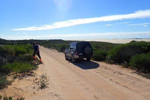 wüstenähnlihe Sanddünen auf dem Weg zum Steep Point