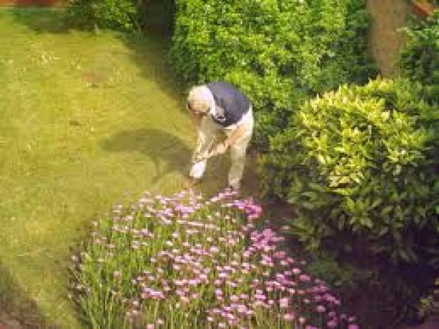 gardener-working-can-be-bitten-by-spiders