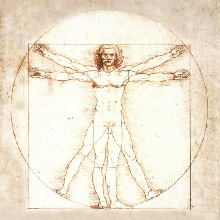 LUomo Vitruviano di Leonardo da Vinci  Adesivo murale in