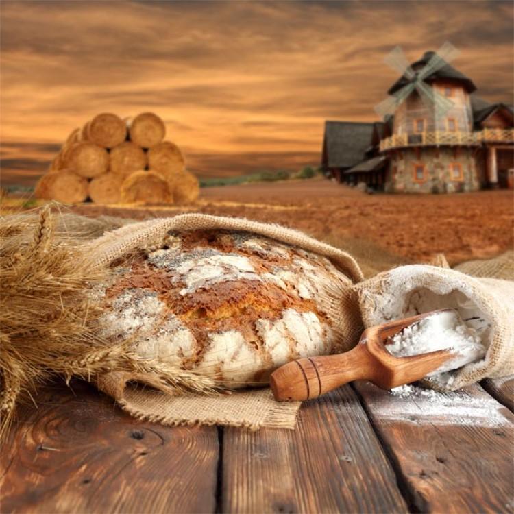 Pane e farina  Quadro per cucina alta qualit