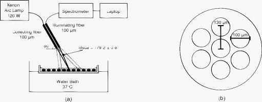 Wavelength-dependent backscattering measurements for
