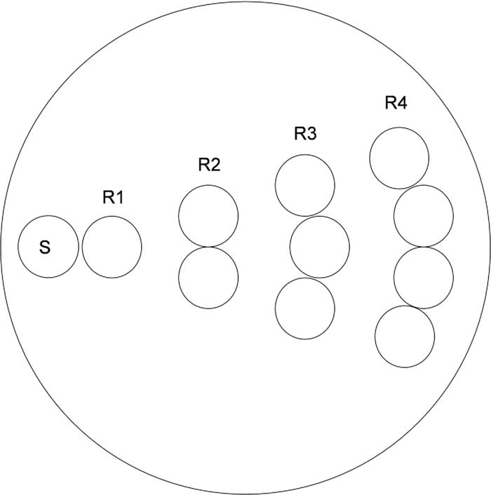Development of a spatially offset Raman spectroscopy probe