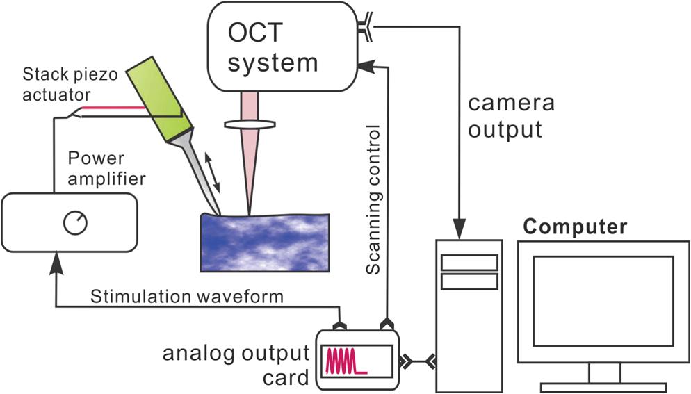 mechanical wave diagram john deere 4x2 gator wiring tracking propagation within tissue using phase measurement setup