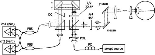 Retinal polarization-sensitive optical coherence