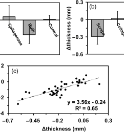 change in a wet weight b thickness and c the correlation between wet weight and thickness of adult bovine cartilage explants n 40 n 40 treated  [ 1335 x 832 Pixel ]