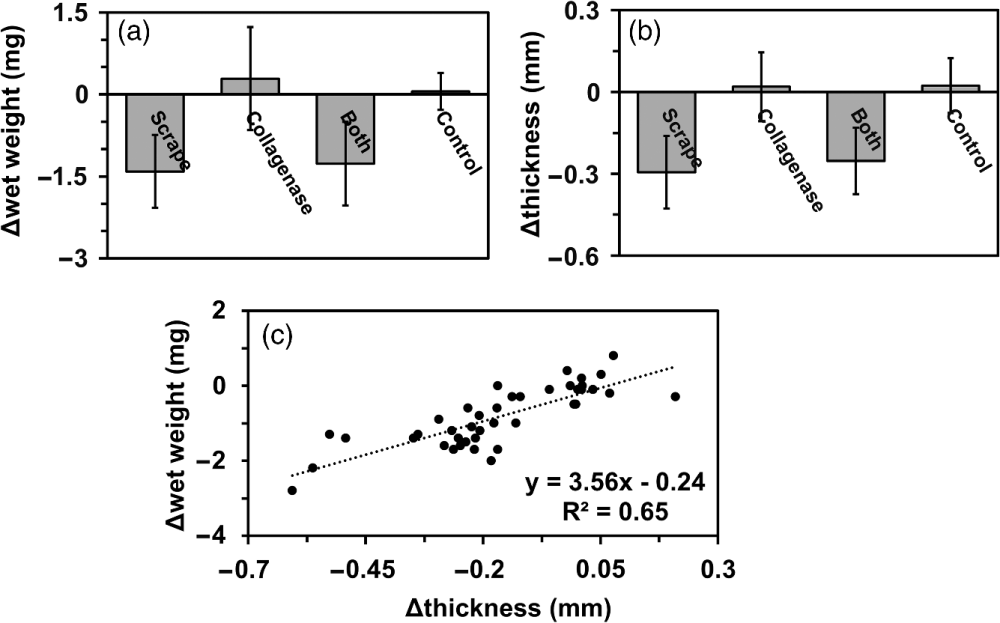medium resolution of change in a wet weight b thickness and c the correlation between wet weight and thickness of adult bovine cartilage explants n 40 n 40 treated