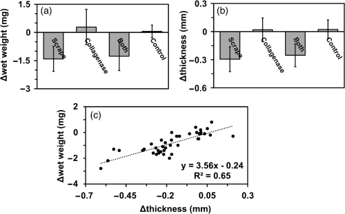 small resolution of change in a wet weight b thickness and c the correlation between wet weight and thickness of adult bovine cartilage explants n 40 n 40 treated