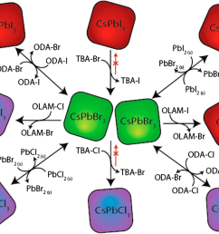 the collective process of a typical anion exchange methods and precursors on cspbx3 cspbx 3 x cl x cl br i qds reprinted with permission from ref  [ 1169 x 931 Pixel ]