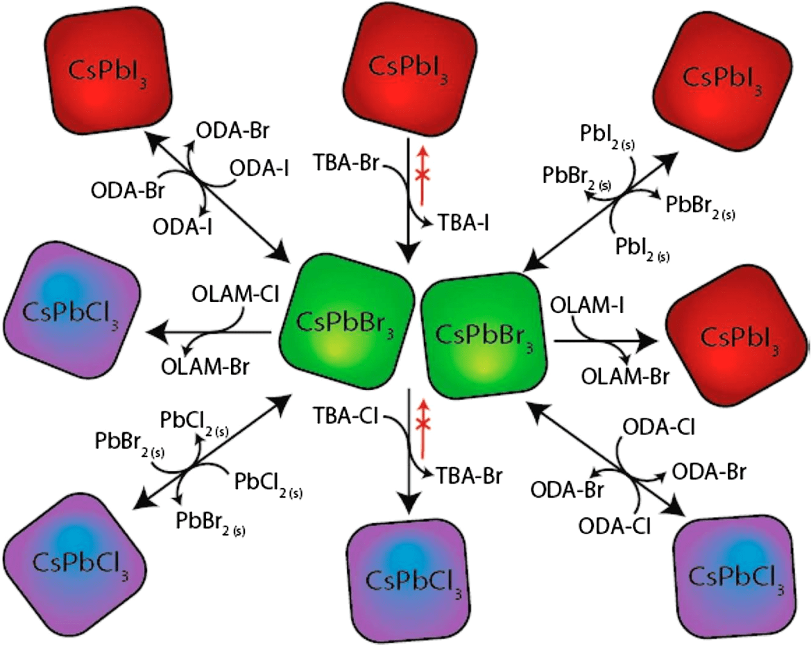 hight resolution of the collective process of a typical anion exchange methods and precursors on cspbx3 cspbx 3 x cl x cl br i qds reprinted with permission from ref