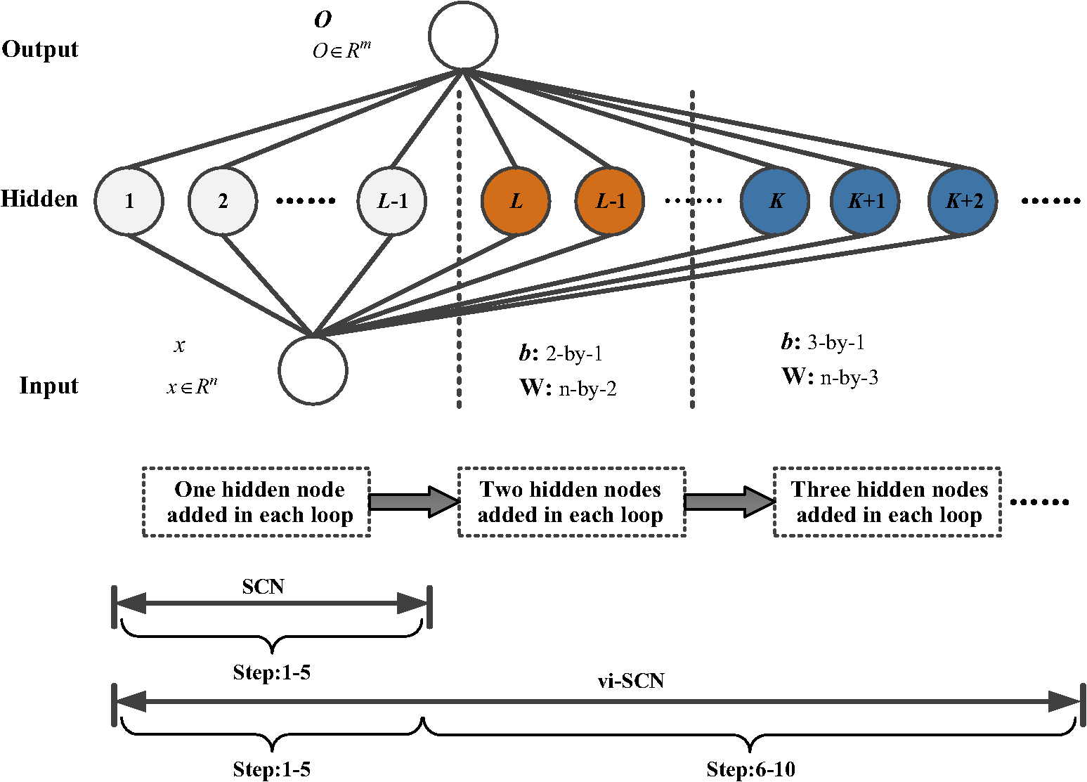 hight resolution of diagram of the scn with variable increment node