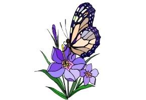 Ausmalbilder Blumen Schmetterlinge Kostenlos