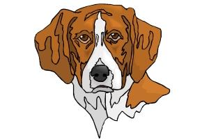 Hundekopf Ausmalbilder Ausdrucken Kostenlos