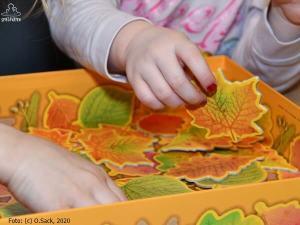 Kinderhand bei Wuehlmaeuse