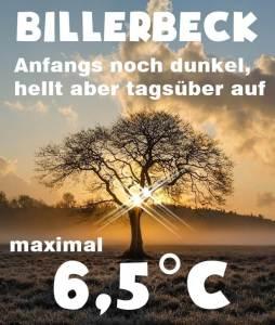 Wetter Billerbeck