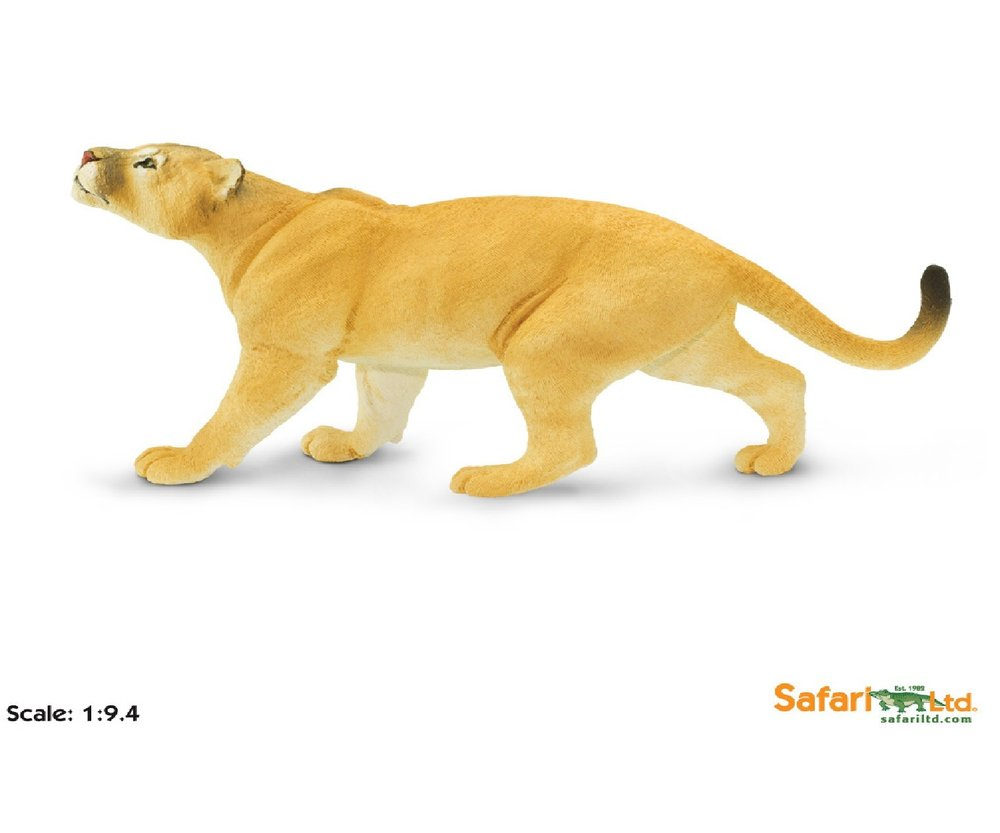 Malvorlage Puma