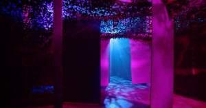 Dschungel Labyrint Berlin Lasertag