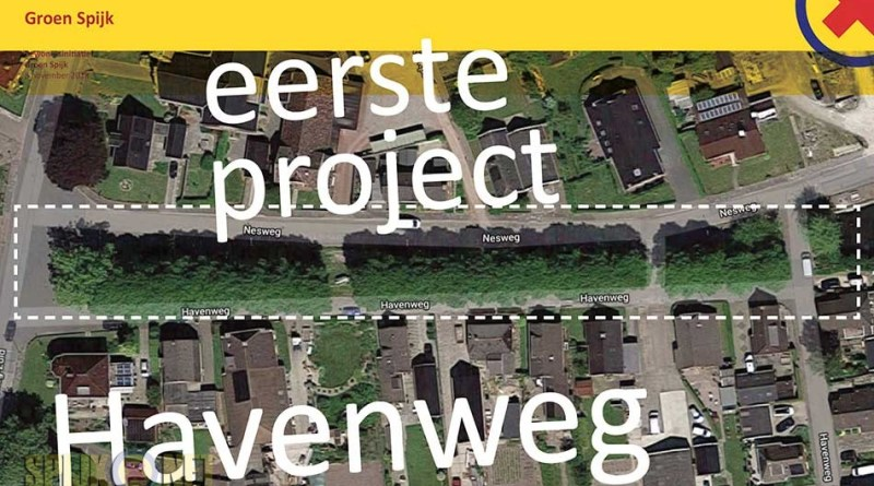 project havenweg nesweg