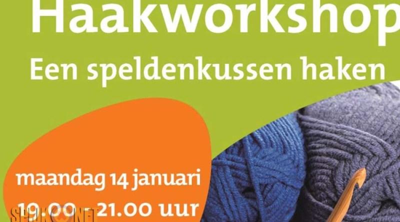 Haakworkshop Speldenkussen Haken Digitaal Portaal Van Spijk Gn