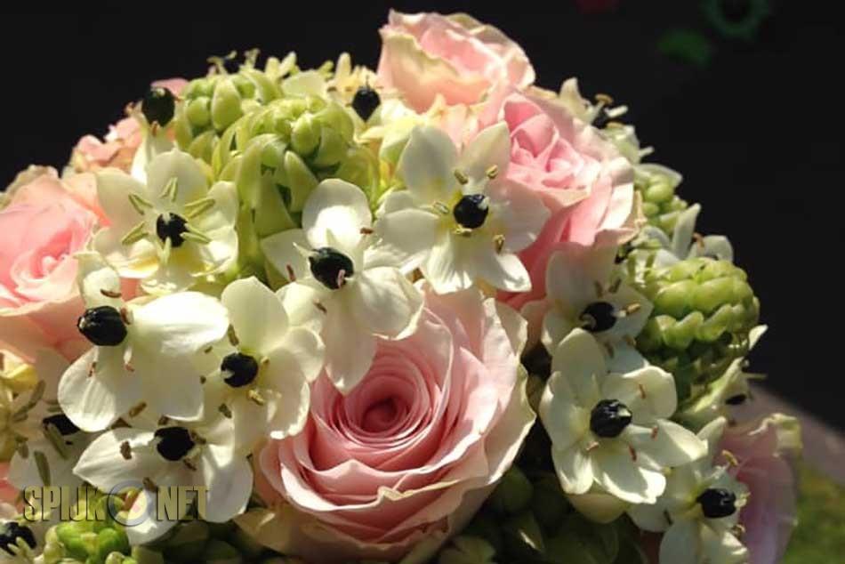 Stijlvol Bloemen nieuw bedrijf in Spijk