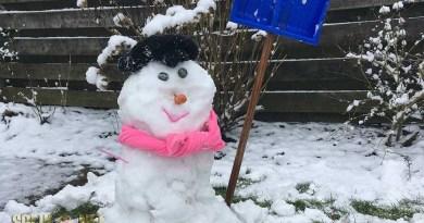 sneeuwpoppen wedstrijd