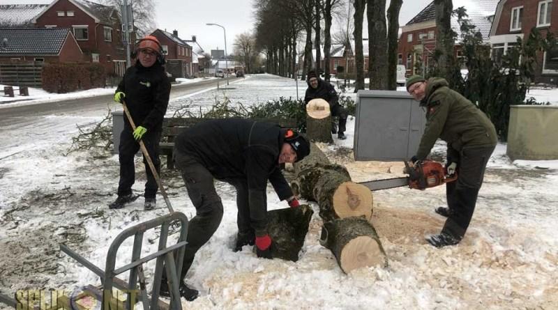 koude start project Havenweg Nesweg Groen Spijk