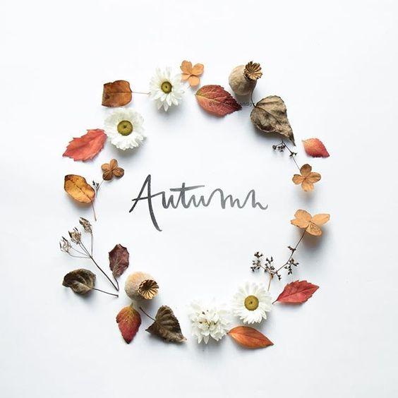 Inizia l'autunno!!! Ecco 3 borse in tartan