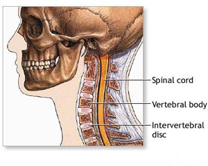 Spine Surgery Spine Surgery